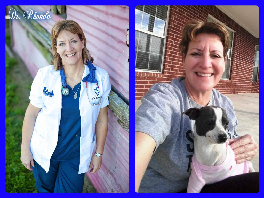 country friends vet clinic royse city dr. rhonda vet